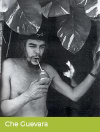 Che Guevara pije yerbę