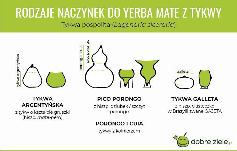 Rodzaje naczynek do Yerba Mate ztykwy - infografika