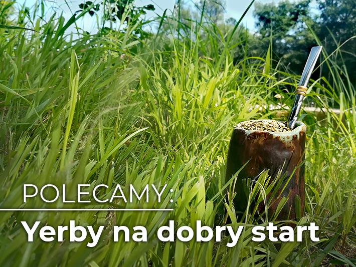 Yerba w ceramicznym naczyniu na tle wysokiej trawy