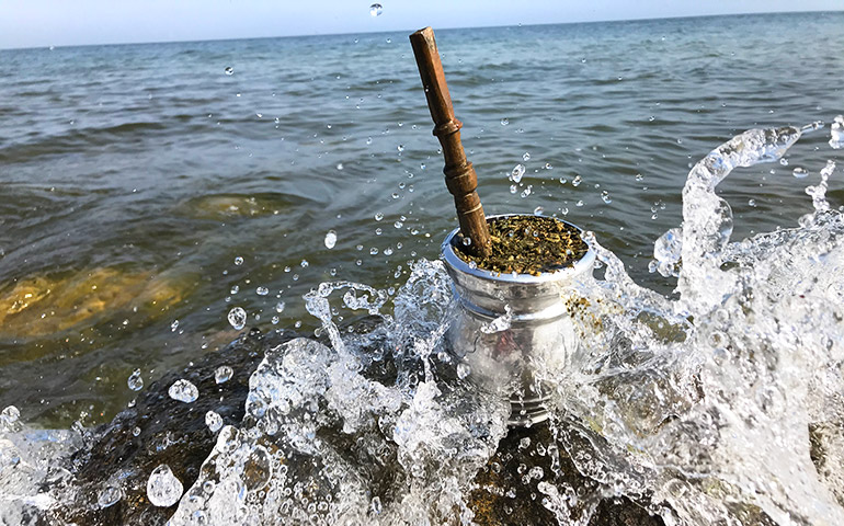 Yerba w Morzu Bałtyckim