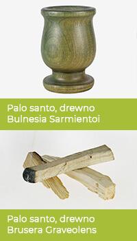 Przykłady dwóch gatunków drewna Palo Santo