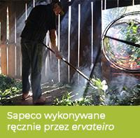Proces zatrzymywania fermentacji yerby - sapeco