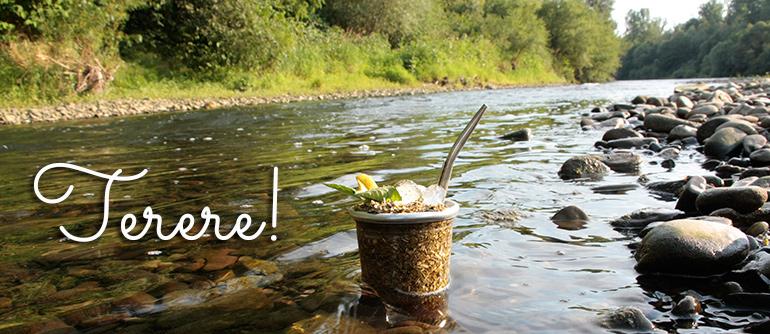 Yerba Mate terere w zimnej rzece.