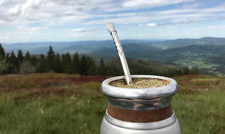 Yerba walgarrobo natle górskich krajobrazów